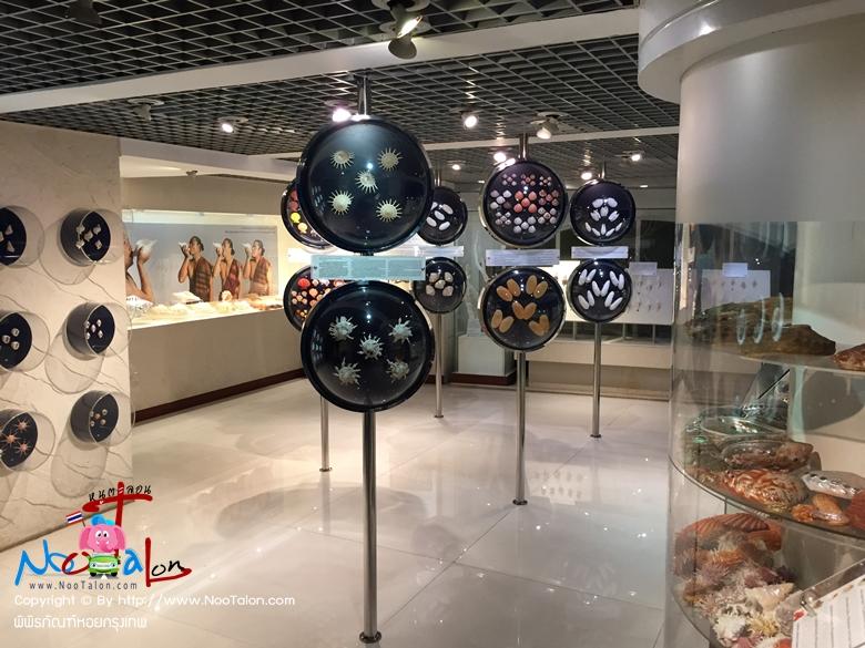 พิพิธภัณฑ์หอยกรุงเทพ